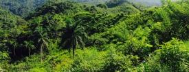 Cuba 2016 _Copyright Break and Trek_IMG_6082