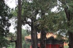 Pékin Break and Trek _2017_12