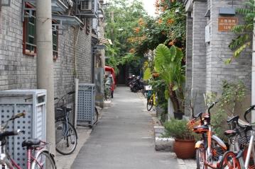 Pékin Break and Trek _2017_2