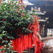 Qingcheng Break and Trek _2017_12
