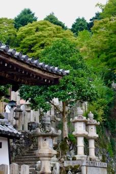 Nara Japon Break and Trek 2017_15
