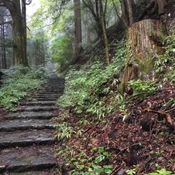 Nikko Japon Break and Trek _2017_24