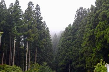 Nikko Japon Break and Trek _2017_34