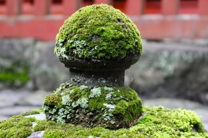 Nikko Japon Break and Trek _2017_42