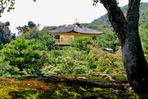 Pavillon d'Or Kyoto Japon Break and Trek_2017_14