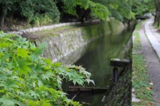 Chemin du Philosophe Kyoto Japon © Break and Trek_2017_10