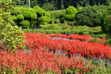 Nature du Japon © Break and Trek_2017_10