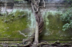 Beng Mealea Cambodge © Break and Trek_2017_6