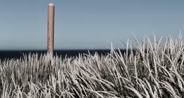Dunedin © Break and Trek_2017_16