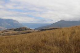 Rocky Mountain Track NZ © Break and Trek_2017_7
