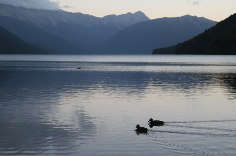 Nouvelle Zelande © Break and Trek_2018_28