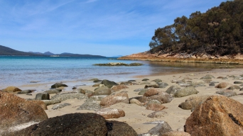 Freycinet & Sanctuaire Tasmanie © Break and Trek_2018_6
