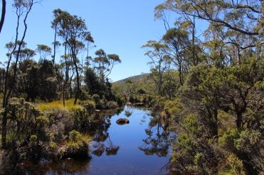 Mount Field Tasmanie © Break and Trek_2018_1