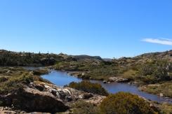 Mount Field Tasmanie © Break and Trek_2018_4