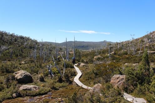 Mount Field Tasmanie © Break and Trek_2018_7