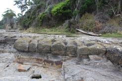 Port Arthur & les Pavements Tasmanie © Break and Trek_2018_3