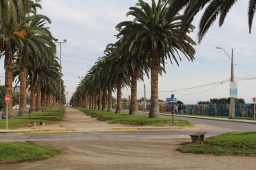 La Serena Chili © Break and Trek_2018_111