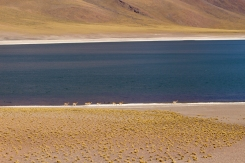 San Pedro de Atacama © Break and Trek _ 2018 _ Chili 24