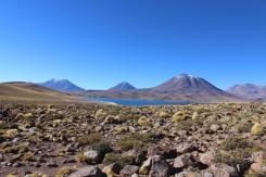 San Pedro de Atacama © Break and Trek _ 2018 _ Chili 25