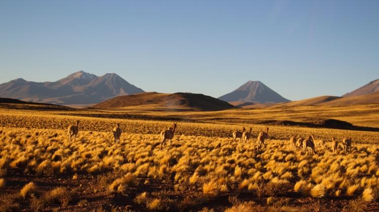 San Pedro de Atacama © Break and Trek _ 2018 _ Chili 31